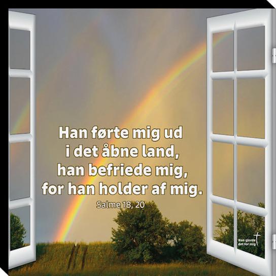 Salme 18, 20 Image