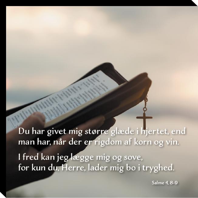 Salme 4, 8-9 Image