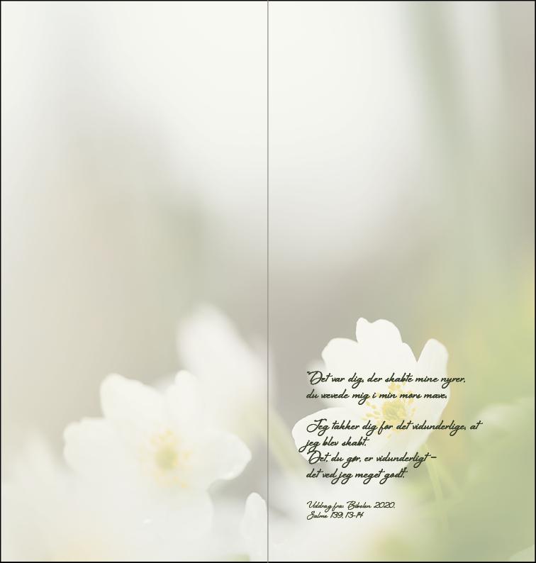Fødselsdagskort 2 - inderside Image