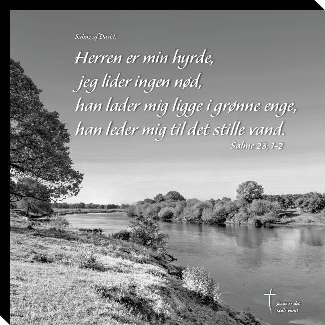 Johannes 15, 4 Image